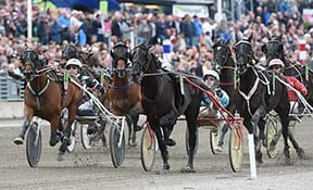 Shocker in the Elitlopp