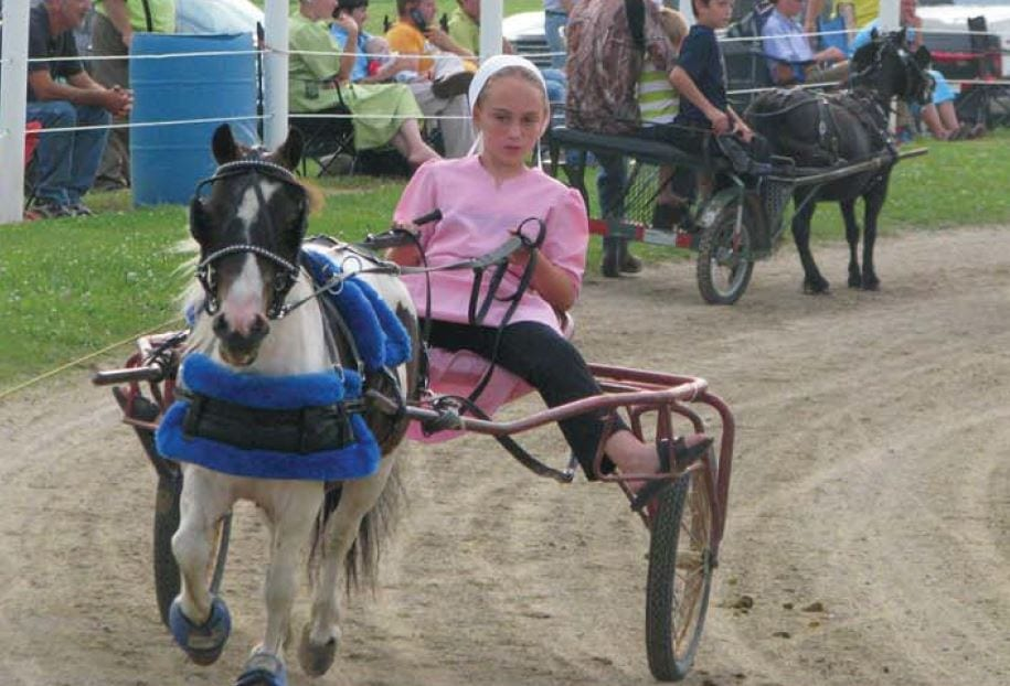 At Nappanee Raceway, Little Horses Put On a Big Show