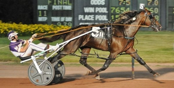 Always B Miki (David Miller) equalled the 1:47 five-eighths mile track world record while winning his Ben Franklin elimination | Curtis Salonick
