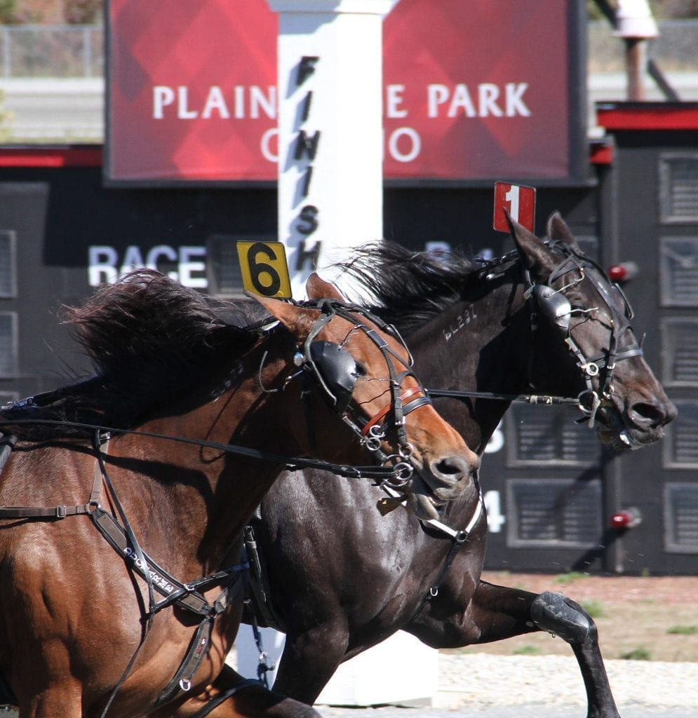 Live handle at Plainridge Park is up 28 per cent over a year ago as the track's casino celebrates its one-year anniversary | Courtesy Plainridge Park