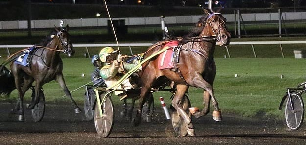 Corey Callahan orchestrated a 38-1 upset with Side Bet Hanover in one of two Hambletonian Oaks eliminations Saturday at the Meadowlands | Michael Lisa