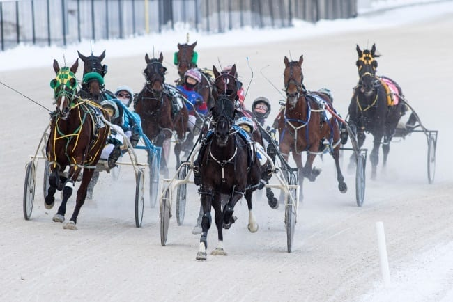 Western Fair Harness Racing