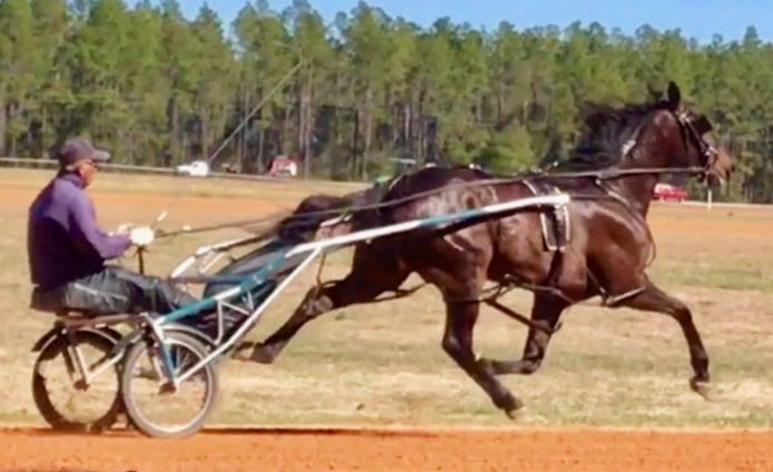Nearly a year after the fire at the South Florida Training Center, trainer Roman Lopez is back on his feet and training a stable at Southern Oaks Training Center thanks to the generosity of people in the industry. | Donna Duer