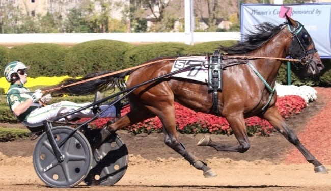 Heading into her sophomore season, the 2016 Dan Patch and O'Brien Award winner Ariana G (Yannick Gingras) is the one to beat in the three-year-old trotting filly class | Mark Hall / USTA