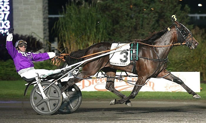 Meanwhile Brett Miller (shown winning his first Breeders Crown in 2015 with Pure Country at Woodbine) has taken a long and winding road to the top | New Image Media