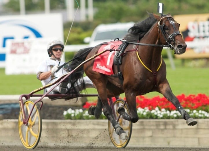 Brian Sears (winning the Hambletonian with Muscle Hill) said Yonkers is just 20 minutes from his house and provides the best purses in the land | Dave Landry