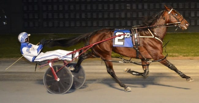 Downbytheseaside provided driver Chris Page with his biggest career victory by winning the $308,060 Hap Hansen Progress Pace on Thursday night at Dover Downs. Downbytheseaside equalled his career best mile of 1:48.3 | Courtesy Dover Downs