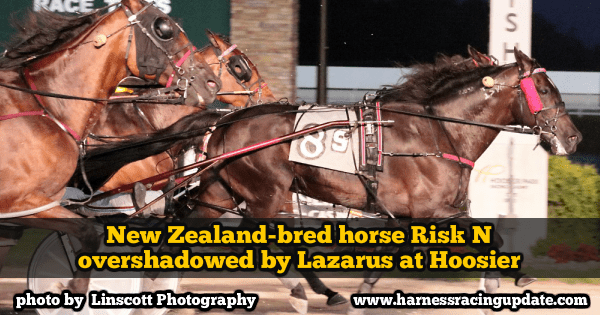 New Zealand-bred horse Risk N overshadowed by Lazarus at Hoosier