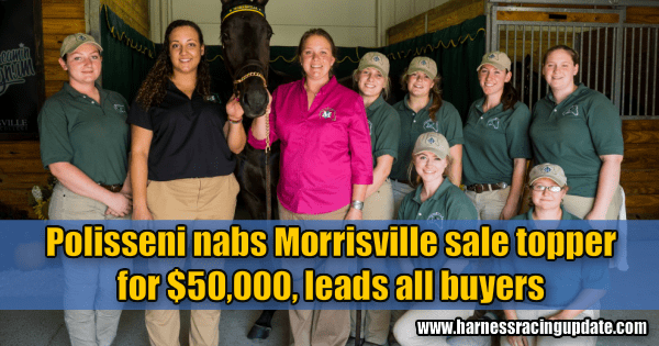 Polisseni nabs Morrisville sale topper  for $50,000, leads all buyers
