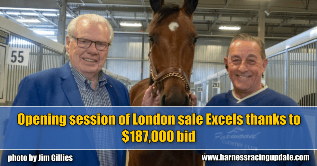 Opening session of London sale Excels thanks to $187,000 bid