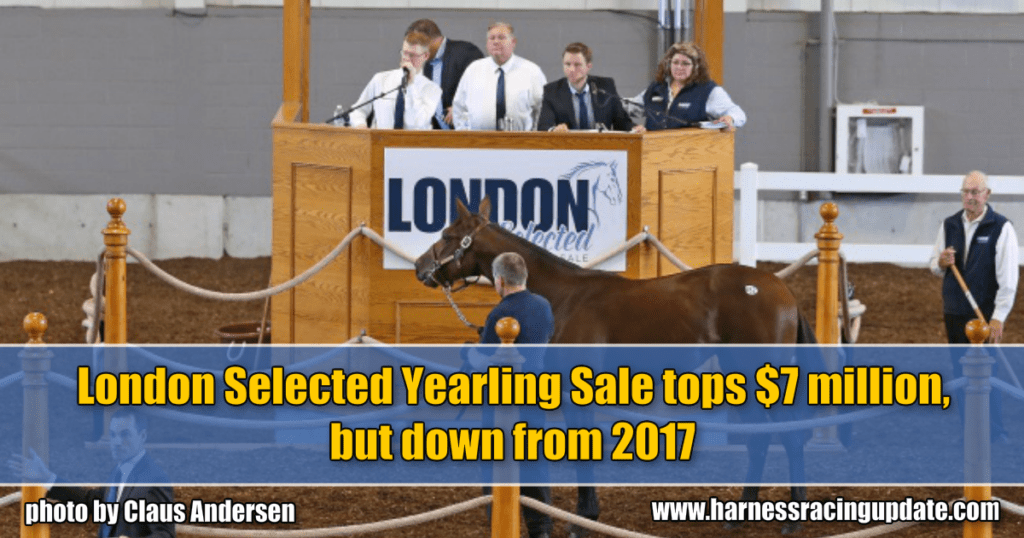 London Selected Yearling Sale tops $7 million, but down from 2017