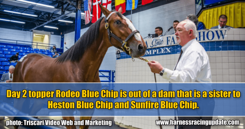 Day 2 topper Rodeo Blue Chip is out of a dam that is a sister to Heston Blue Chip and Sunfire Blue Chip.