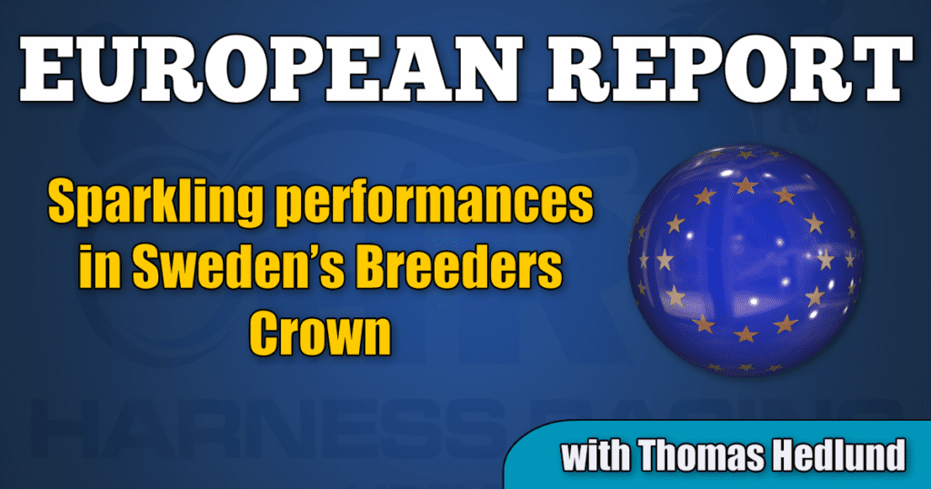 Sparkling performances in Sweden's Breeders Crown