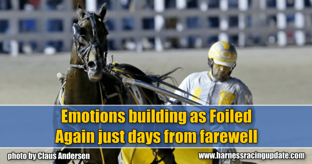 Emotions building as Foiled Again just days from farewell