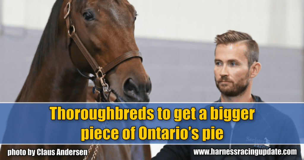 Thoroughbreds to get a bigger piece of Ontario's pie