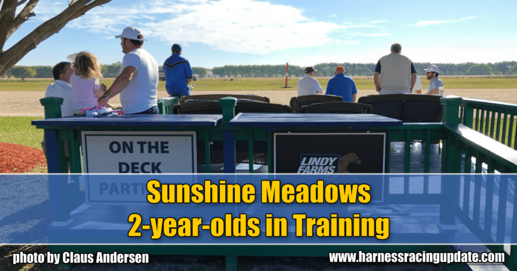 Sunshine Meadows 2-year-olds in Training