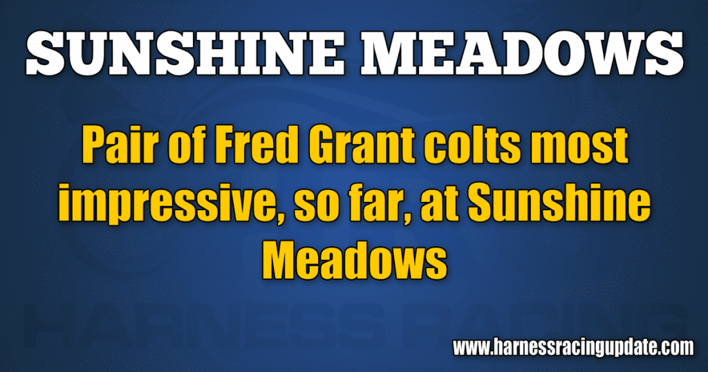 Pair of Fred Grant colts most impressive, so far, at Sunshine Meadows
