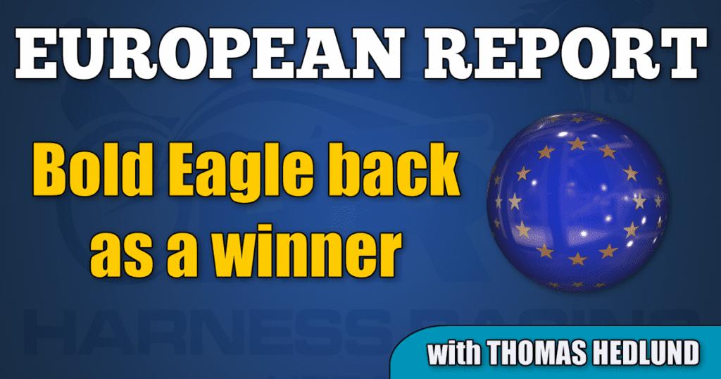 Bold Eagle back as a winner