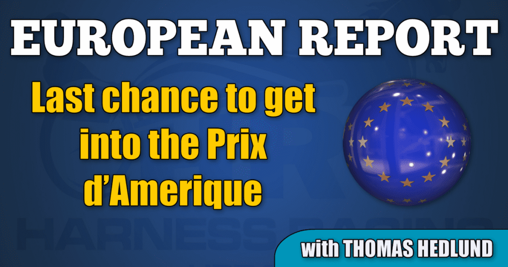 Last chance to get into the Prix d'Amerique