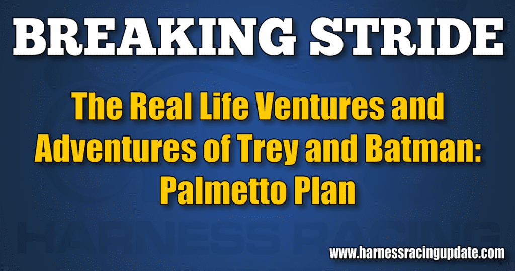 Palmetto Plan