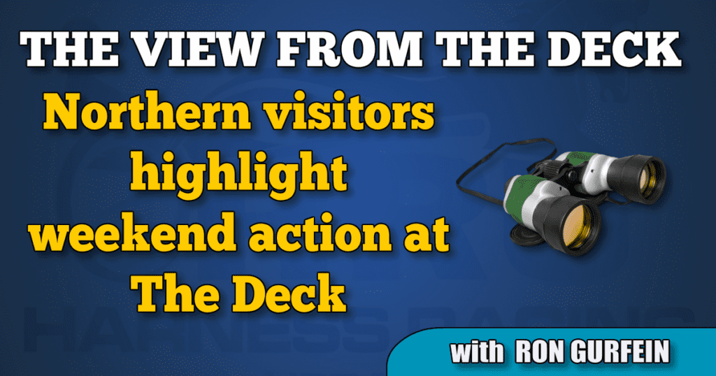 Northern visitors highlight weekend action at The Deck