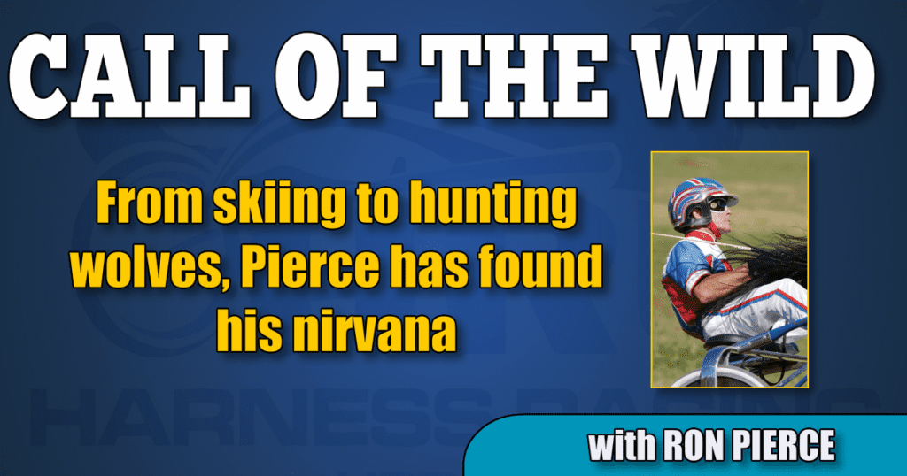 From skiing to hunting wolves, Pierce has found his nirvana