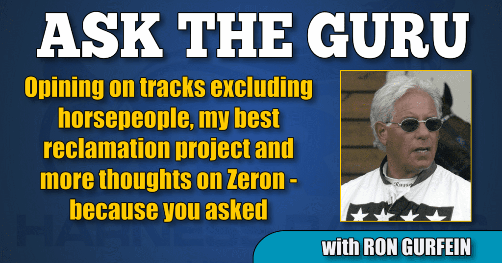 Opining on tracks excluding horsepeople, my best reclamation project and more thoughts on Zeron — because you asked