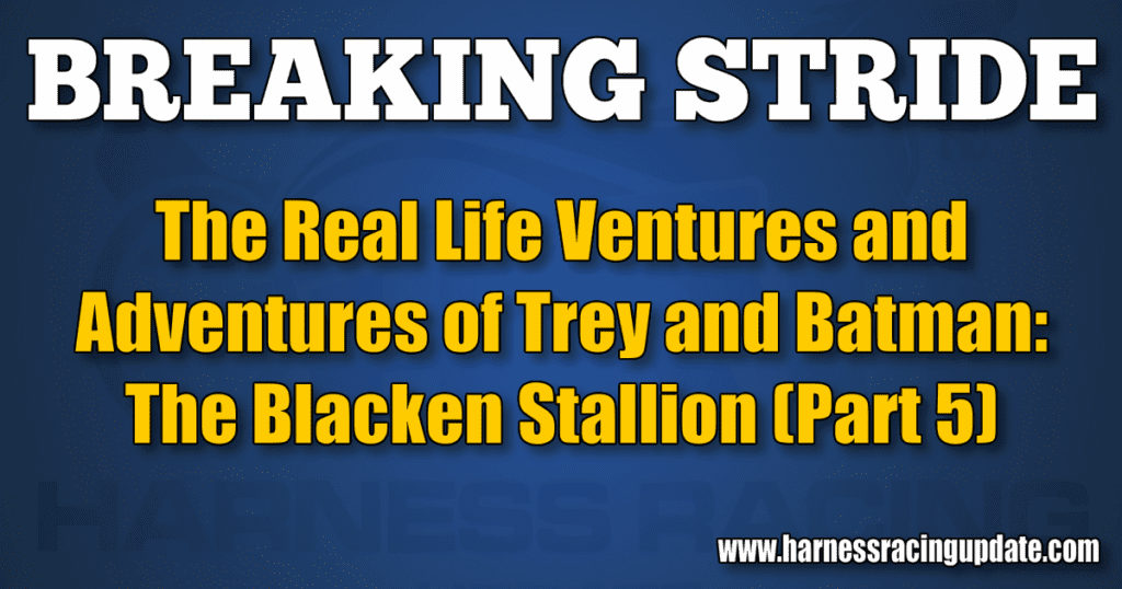 The Blacken Stallion (Part 5)
