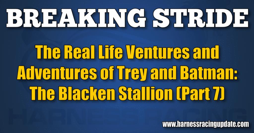 The Blacken Stallion (Part 7)