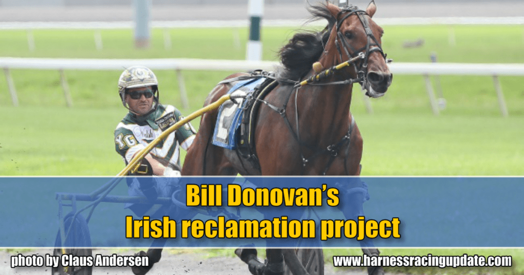 Bill Donovan's Irish reclamation project