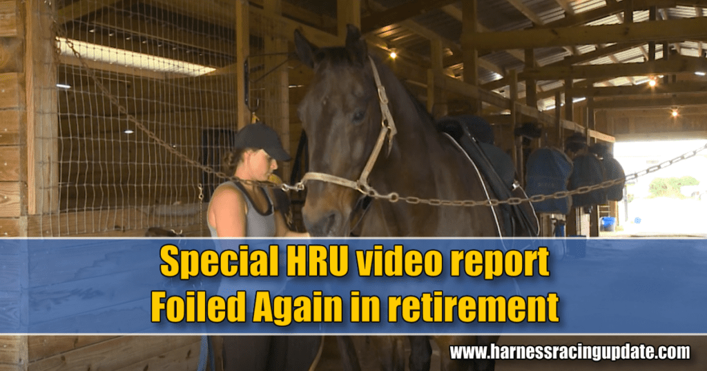 Special HRU video report – Foiled Again in retirement