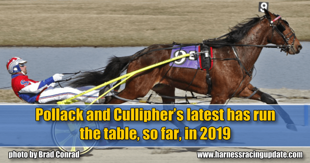 Pollack and Cullipher's latest has run the table, so far, in 2019
