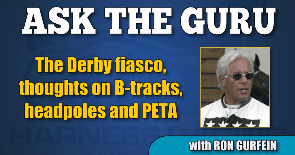 The Derby fiasco, thoughts on B-tracks, headpoles and PETA