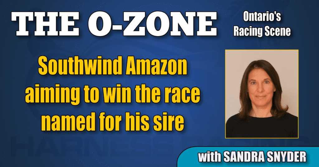 Southwind Amazon aiming to win the race named for his sire