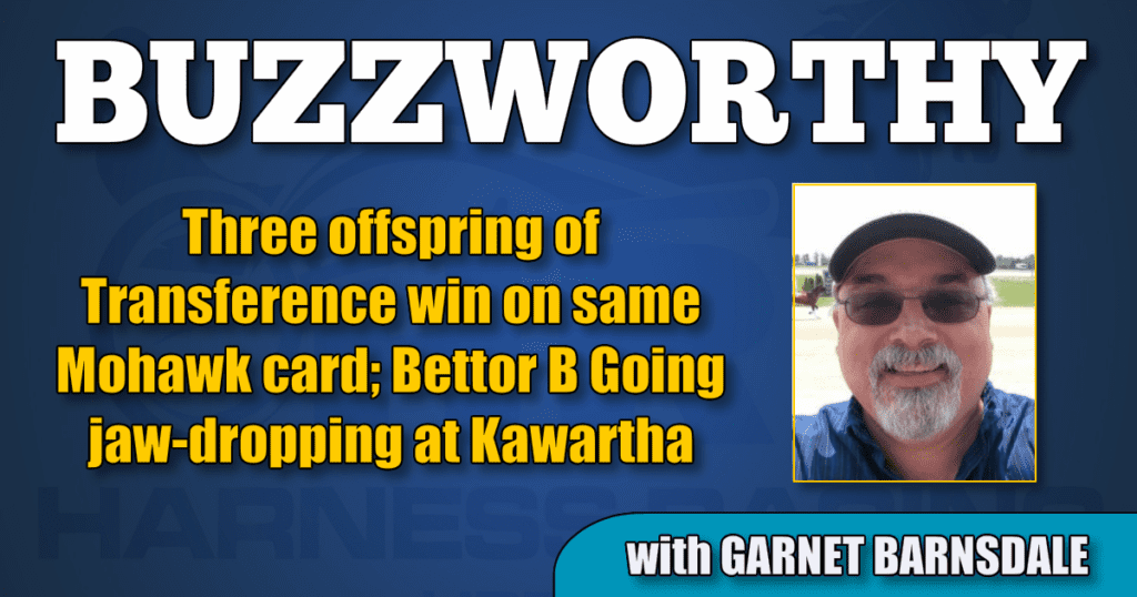 Three offspring of Transference win on same Mohawk card; Bettor B Going jaw-dropping at Kawartha
