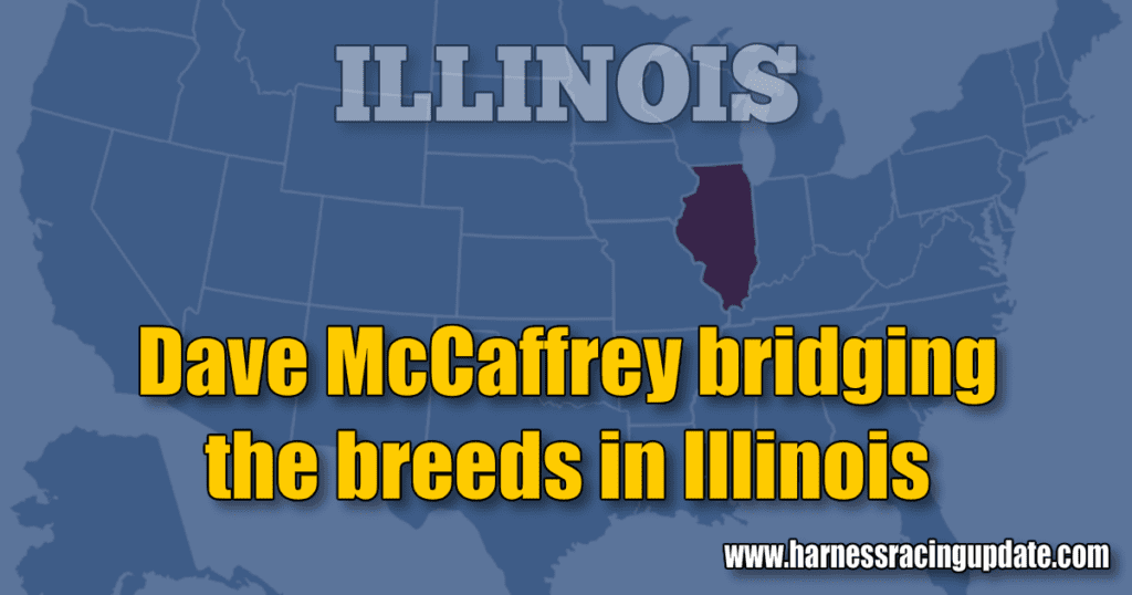 Dave McCaffrey bridging the breeds in Illinois