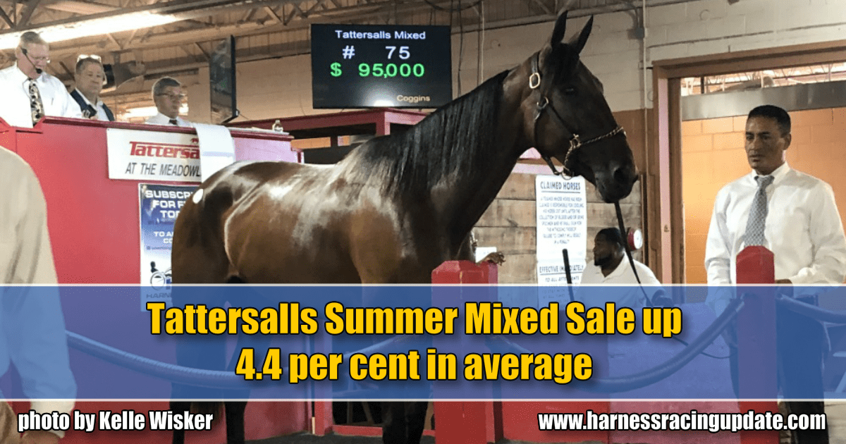 Tattersalls Summer Mixed Sale up 4.4 per cent in average