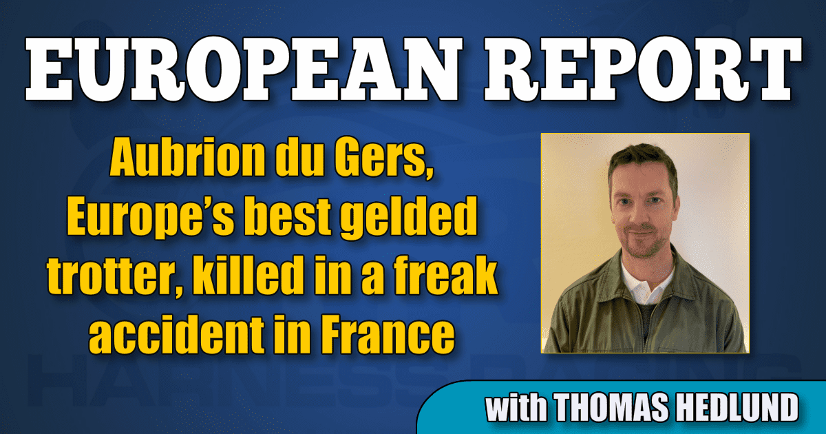 Aubrion du Gers, Europe's best gelded trotter, killed in a freak accident in France