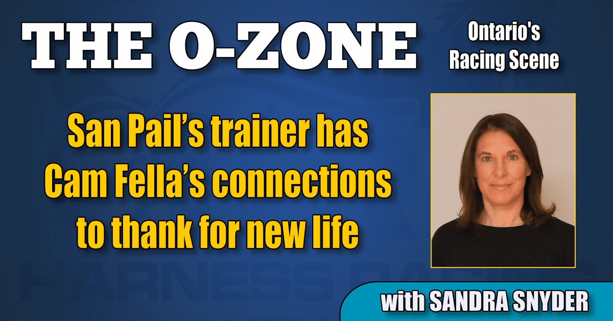 San Pail's trainer has Cam Fella's connections to thank for new life