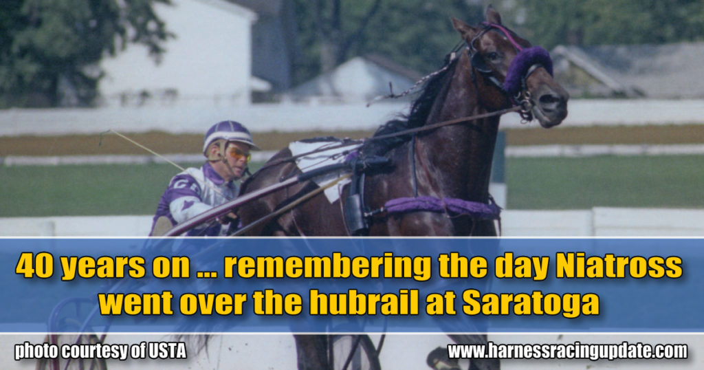 40 years on… remembering the day Niatross went over the hubrail at Saratoga