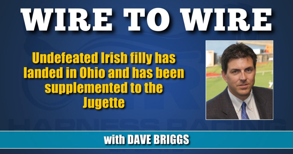 Undefeated Irish filly has landed in Ohio and has been supplemented to the Jugette