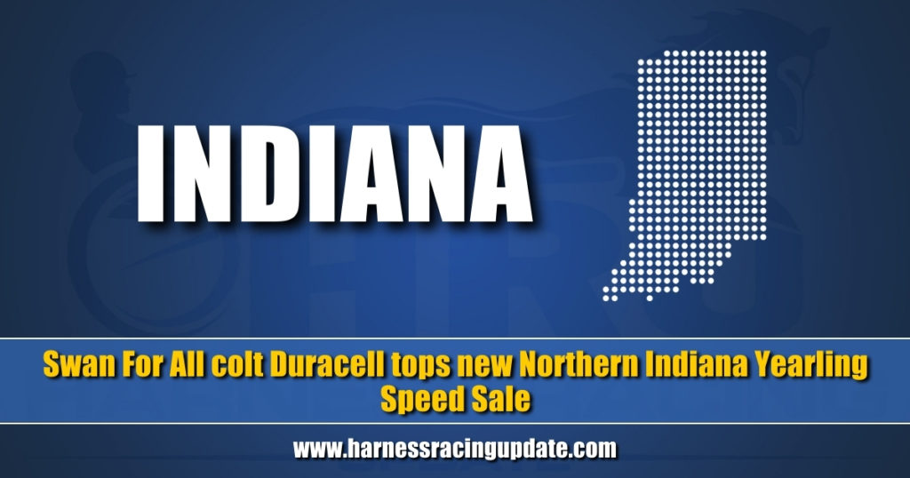 Swan For All colt Duracell tops new Northern Indiana Yearling Speed Sale