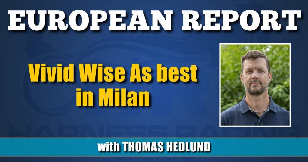 Vivid Wise As best in Milan