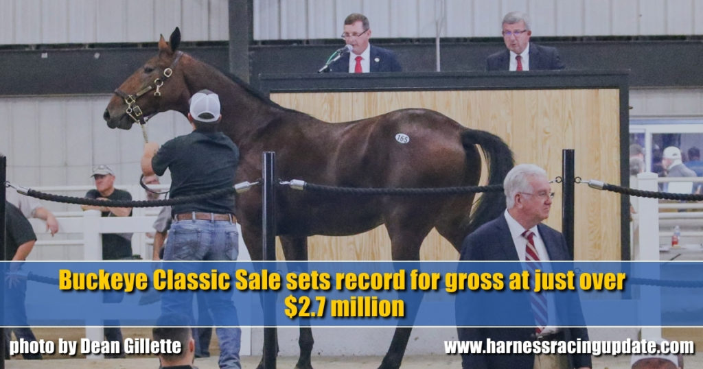 Buckeye Classic Sale sets record for gross at just over $2.7 million